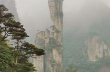 三清山:蛇、女神、象、海狮、龟、中指