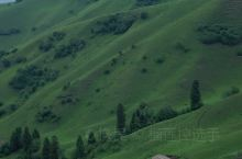 草原真的太美好了|那拉提