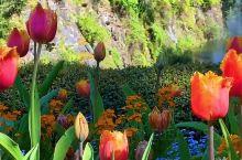 世界十大最美花园——布查德花园