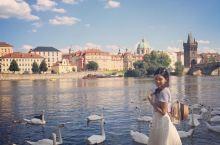 布拉格旅行最美的回忆天鹅记