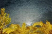 海口世纪公园,是海口人经常去的地方。它除了可以踢球,打球,散步,游览之外,它同时是外地人必须到达的网