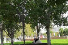 贝尔谢巴中心公园