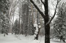 雪乡雪山的穿越之旅,一片白茫茫