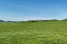 再发几张草原图,这是在乌兰布统照的,感觉很漂亮。