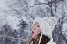 雪乡旅游攻略东北旅游攻略雪乡包车