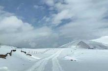 龙灯草原上的冰雪路
