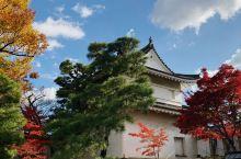 京都色彩之旅