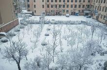 雪景都是好看的