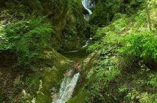 牛背梁国家森林公园   最推荐: 空气清新,景色优美