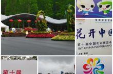 花博会丨花开中国梦