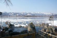屈斜路湖采访拍到的可爱天鹅们