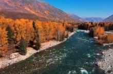 新疆禾木村清晨拍日出,延着禾木河飞行拍摄,后段意想不到,太刺激太刺激!