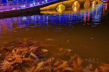 本溪桓仁有个章樾公园夜景太美