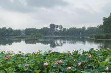 北京 西海  这两天翻到很多北京旅游的帖