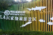#网红打卡地 #美食寻味记 新港湖区公园