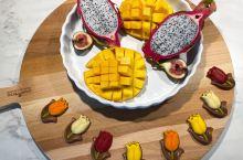 🇳🇱Go Vagan@Holland素食修行在荷兰