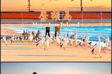 周杰伦&昆凌の蜜月岛| Moreton Island  这座岛,因为被周杰伦看中作为蜜月岛而声名鹊起