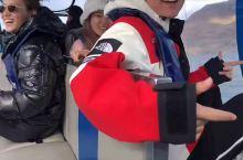 新西兰皇后镇鲨鱼船打卡