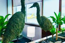 奥兰多机场美联航贵宾室