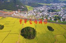 罗平金鸡峰丛油菜花-2021.03