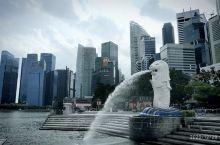 鱼尾狮是新加坡的标志,鱼尾狮公园也是游客必到之地。大鱼尾狮面向大海,视野开阔,有金沙酒店和摩天轮相呼