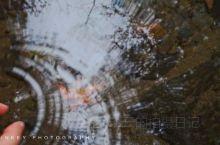 房车旅行|拾起一片烟雨杭州的深秋