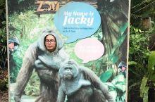 一八年  出团通知上边的行程上说是奇幻动物世界 度娘说是动物园