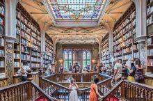 波尔图的哈利波特魔法书屋 莱罗书店