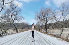 冬天的老里克湖,仿佛走进了白雪森林