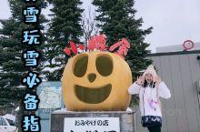 北海道小樽赏雪玩雪必备指南