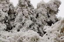 天然的冰雕真是美极了