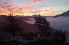 果园里的日出云海 松阳枫坪沿坑岭画家村