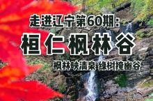 走进辽宁第60期:桓仁枫林谷。