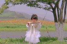 杭州亲子游宝藏溜娃地#超好拍油画感花海