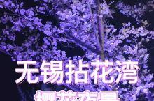 无锡 拈花湾,夜晚游园之赏夜樱