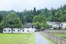 井冈山革命根据地 ,丛林莽莽苍苍,革命遗址星罗棋布,在每个地方都有被篆刻下的名字,被留下的黑白照片。