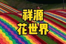 大合肥的网红聚集地