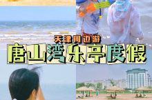 夏日好去处|去乐亭唐山湾赶海遛娃吃海鲜