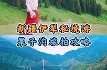 新疆伊犁旅拍 果子沟自驾攻略!西北第一桥