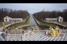 4月28日上午。来到了圣彼得堡郊外的夏宫。该宫1714年由彼得大帝亲自督造,因此又被称为彼得宫。花园