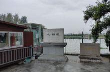 南京七桥瓮湿地公园