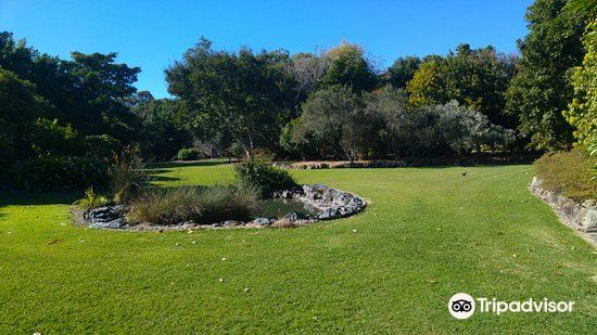 North Coast Regional Botanic Garden3