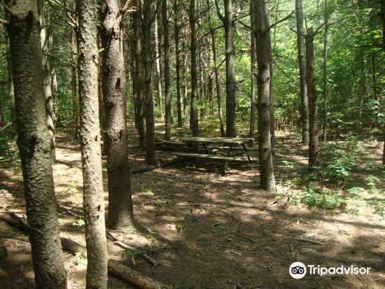Pinehurst Lake Conservation Area3