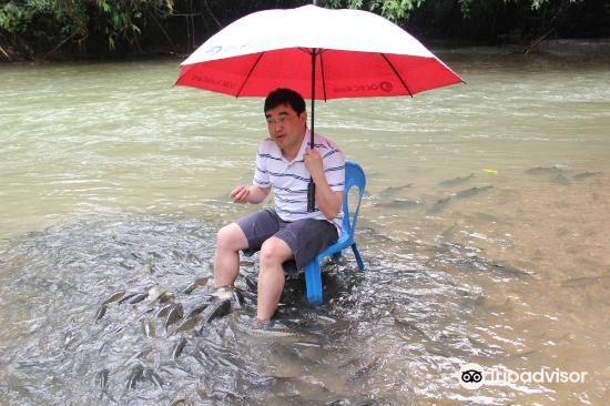 Sungai Moroli Fish Massage3