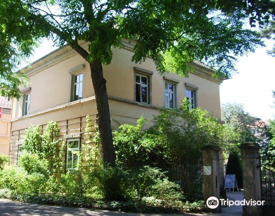 Liszt Haus4