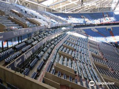 Veltins Arena