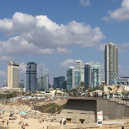 Shalom Tower1