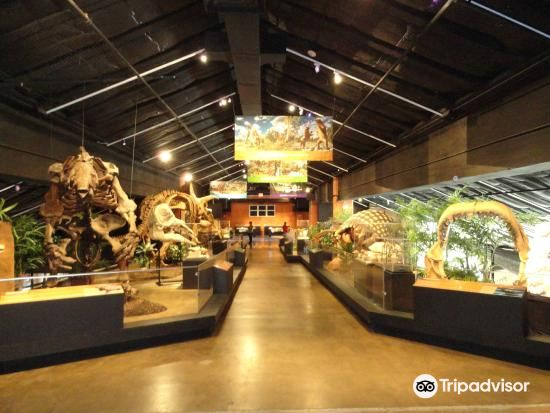 Houston Museum of Natural Science at Sugar Land