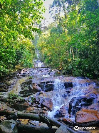 甘清雨林瀑布1