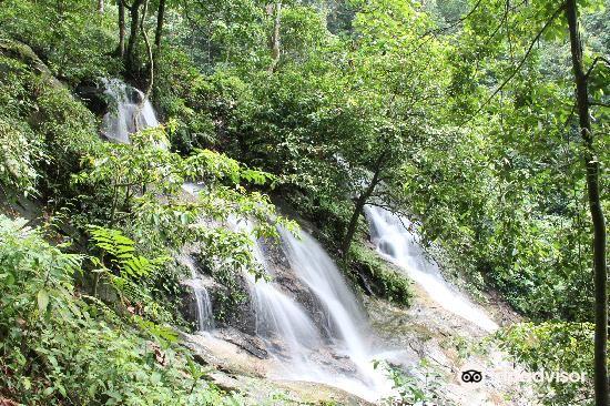 甘清雨林瀑布4